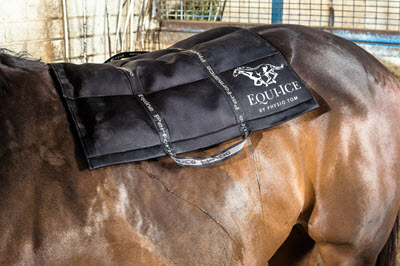 Advanced Equine Icing Packs