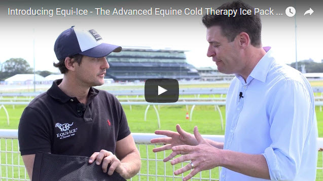 Physio Tom discusses post exercise horse recovery