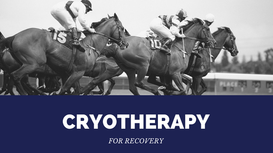 Cryotherapy for recovery in athletes and horses